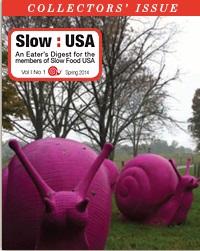 Slow USA