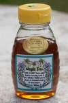 """Maple tree (WA): floral (x3), high sweetness, jasmine, bright, mapley, """"maple syrup with a flowery taste,"""" woody, light texture, """"burns throat"""""""